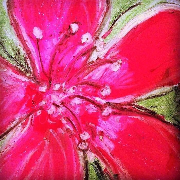 Pink Hibiscus Detail